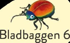 Bladbaggen 6